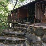 Photo de Forest Houses Resort
