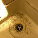 Foto de Gilmore City Centre Guest House