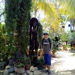 Jardin principal de la viila mozart
