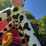 La structure glonflable vache qui plaît même au plus vieux (le gros bébé sur la photo à 31 ans)