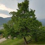 Photo of Castel Pergine