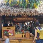 Foto de Tiki Juice Bar