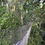 Hanging bridges at sister property