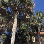Photo de Ramada Plaza Fort Walton Beach Resort/Destin