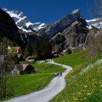 Foto de Gasthaus Alpenrose