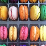 Macarons! 😋