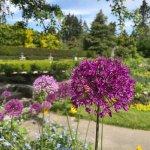 Photo de VanDusen Botanical Garden