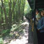 On the way up to Bald Knob on the Cass Scenic Railroad.