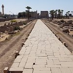 Avenue of Sphinxes towards Luxor Temple