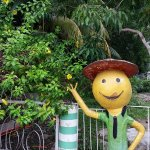 welcoming smiley at People's Park