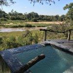 Photo de Dulini River Lodge