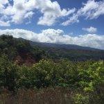 Photo of Canyon Trail