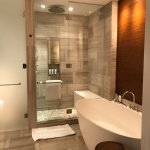 Large shower and bath with great amenities