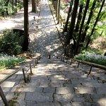 菩提梯から振り返ってみた石畳の参道。