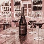 Weinverkostungen im Hochfilzer Weinkeller