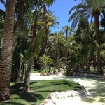 Photo de Hotel Riu Palace Oasis