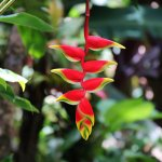 Photo of Garden of Eden Arboretum & Botanical Garden