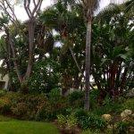 Photo of Lemon Tree Inn