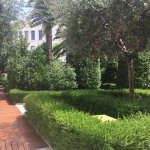 Photos of the front of the Westin Valencia. The garden, the lunch restaurant El' Jardin , the lo