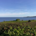 Photo of The Carlyon Bay