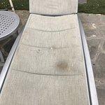 Disgusting pool furniture, water not clear or skimmed & filthy pool deck areas. Staff walking ar