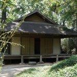 Tea Room House