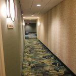 SpringHill Suites by Marriott Orlando at SeaWorld Photo