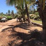 Foto de Stone Island (Isla de las Piedras)