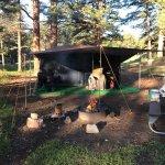 Foto di Moraine Park Campground