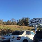 Bluebird Inn Foto