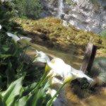 vue sur la cascade