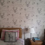 The Stag Room :-D