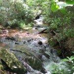 Cascades Falls Foto