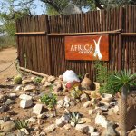 Photo de Africa on Foot Camp