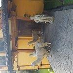 Foto de Hacienda Rumiloma