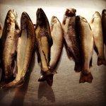 Séjour de pêche