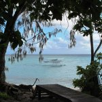 Photo de Heron Island Resort