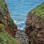 From the cliff top walks