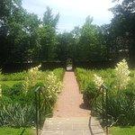 Kenmore Plantation and Gardens张图片