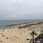 Photo of Sea Lion Hotel