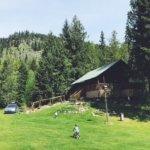 Photo de Cozy Cabins Nature Resort