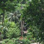 Foto de Siloso Beach Resort Sentosa
