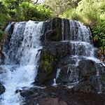 Small falls above Waipo'o Falls