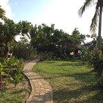 Landscape - Mozambeat Motel Photo