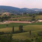 Societa Agricola Vito Celeste & C.s.s.