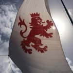 Lion Heart Sail