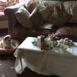 Tess enjoying her stay while I attempted to make a dent in the Afternoon Tea