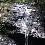 Bukit Patoi Forest Recreation Park