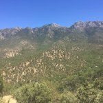 Madera Canyon Picture
