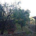 Agriturismo La Casella Foto